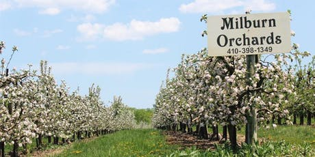Paint Cecil County Maryland - Milburn Orchards July 20 & 21, 2019 tickets