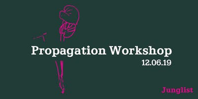 A propagation  and plant care workshop