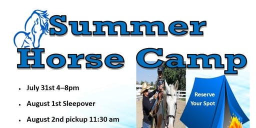 Horse Camp Overnight Learn How to Ride Horses