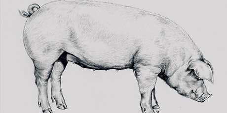 Whole Hog Butchery Workshop at Growing Chefs tickets