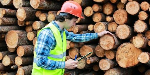 Timber Take Off's