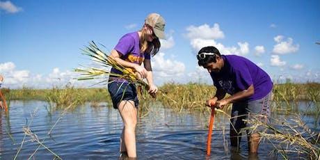 Bayou Bonfouca Marsh Restoration Planting Event on October 19, 2019 tickets