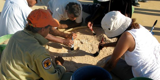 Scientist for a Day: Archaeologist