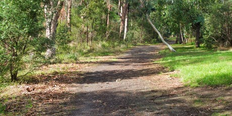 Gardener Creek Photo Walk :: On the Right Path tickets