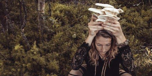 Create Your Own Oyster Mushroom Terracotta Pot
