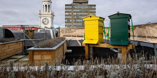 Visit London Met bees