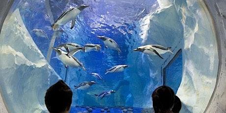 Sea Life Paris Aquarium billets