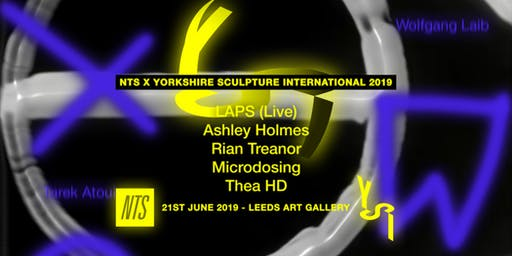 Yorkshire Sculpture International opening party with NTS