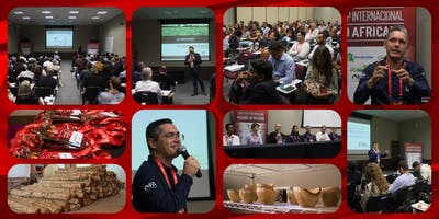 11º Workshop Internacional de Mogno Africano