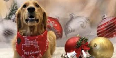 Jingle Mingle Craft Fair & Pooch Party