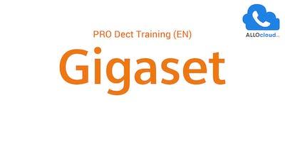 Gigaset Pro DECT Training (EN)