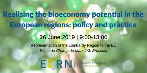 Realising the bioeconomy potential in European regions: policy and practice