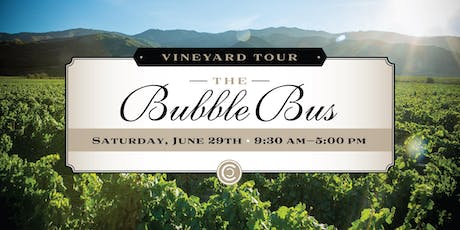 The Bubble Bus tickets
