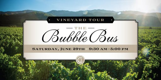 The Bubble Bus