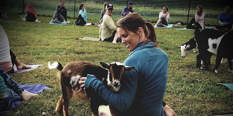 Goat Yoga at Salt Creek Valley Farms tickets