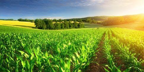 Baldwins Farming Seminar - The lifecycle of a farming business