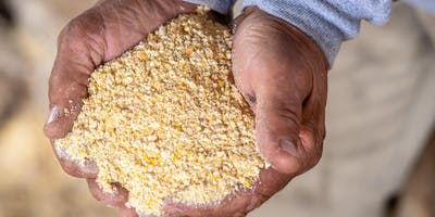 Southern Maryland Grain Growers Workshop