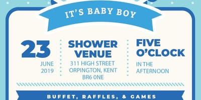 Welcoming Elijah Willows - Willows Baby Shower! x