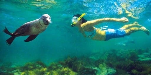 THURSDAY: La Jolla Cove Snorkel Shuttle + Beach Picnic