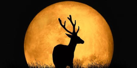 Full Moon Flow and Chill: Buck Moon in Capricorn and Partial Lunar Eclipse tickets