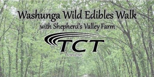 Washunga Wild Edibles Walk