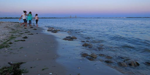Horseshoe Crabs: Plumb Beach, Brooklyn: NYC Wild! Full Moon Photography & Nature Walk