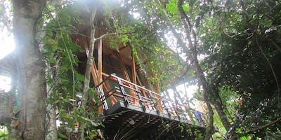 Jungle Immersion: Costa Rica Yoga Retreat