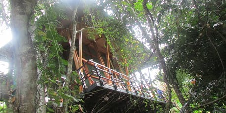 Jungle Immersion: Costa Rica Yoga Retreat tickets