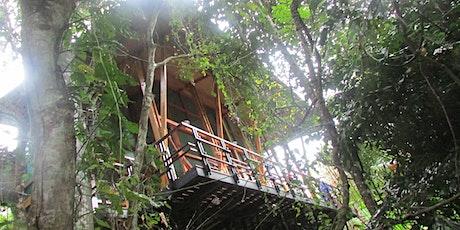 Jungle Immersion: Costa Rica Yoga Retreat tickets