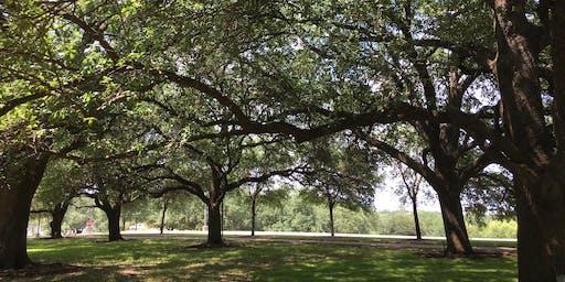 Tree Smart Workshop June