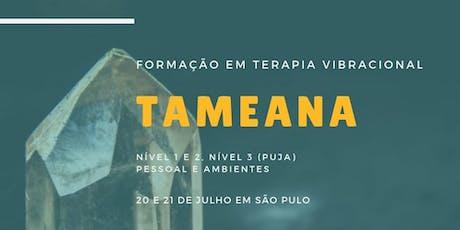 FORMAÇÃO EM TERAPIA VIBRACIONAL TAMEANA  ingressos