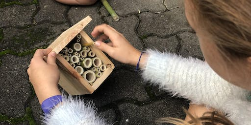 Green Living - BEE Aware for Adults, making an insect hotel
