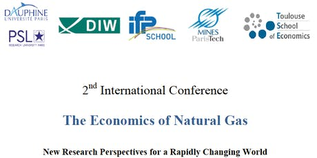 The Economics of Natural Gas:   New Research Perspectives for a Rapidly Changing World billets