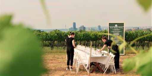 Schnecken, Sekt & Wein am Laaerberg