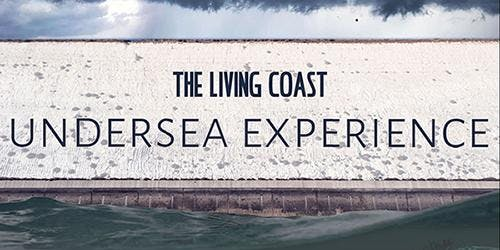 The Living Coast Undersea Experience & activities at Birling Gap