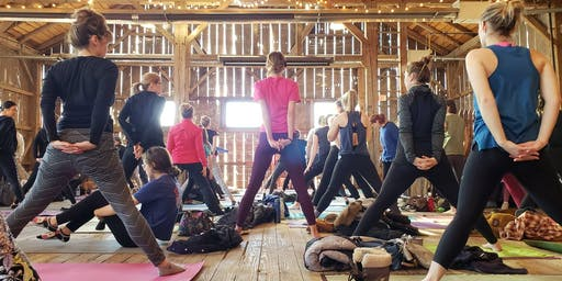 Yoga on the Beach on the Farm -Traders Point Creamery
