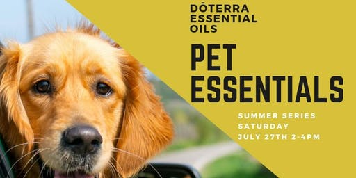 Summer Series: Pet Essentials