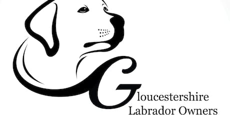 Gloucestershire Fun Dog Show tickets