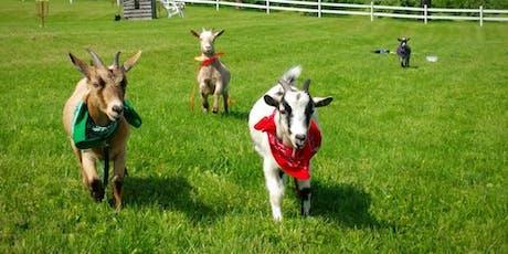 Totes Goats Yoga tickets