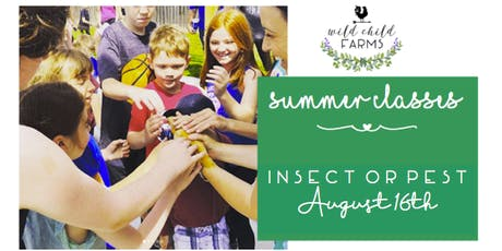 Wild Child Nature School - August - Insect of Pest?? tickets