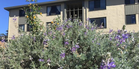 Tour: Native Plant Gardens of the Baker Beach Apartments tickets