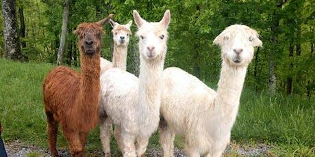 Sunday, June 23rd, 2019 Alpaca Farm Visit tickets