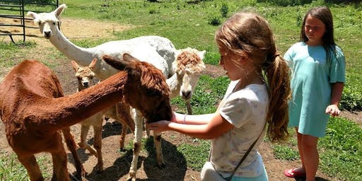 Sunday, August 18th, 2019 Alpaca Farm Visit