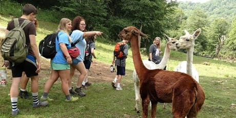 Sunday, August 25th, 2019 Alpaca Farm Visit tickets