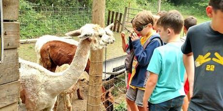Sunday, October 6th, 2019 Alpaca Farm Visit tickets