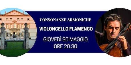 Violoncello Flamenco tickets