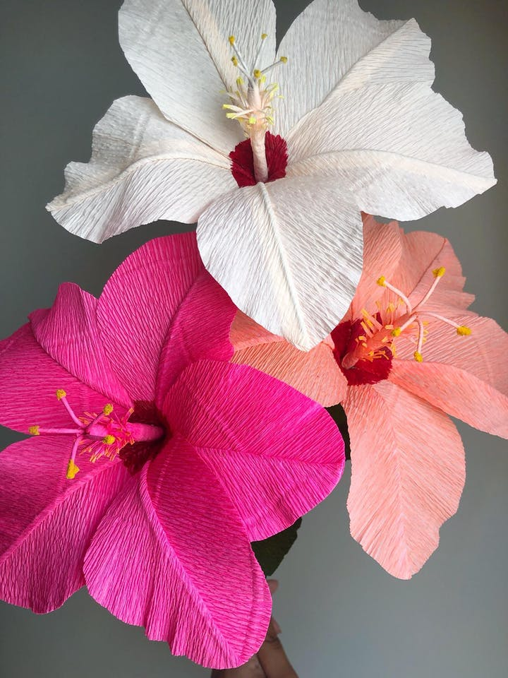 The Art Of Crepe Paper Flower Making Hibiscus Tickets Tue Aug 6