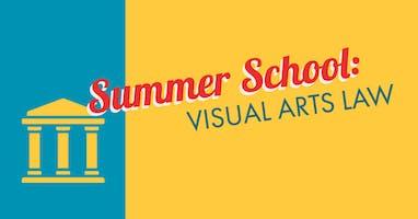 Summer School: Visual Arts Law