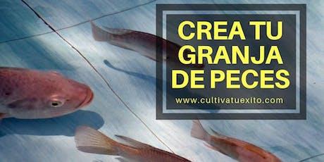 Crea tu Granja de Peces: Un Curso diseñado para Cultivar Tilapias con Éxito tickets