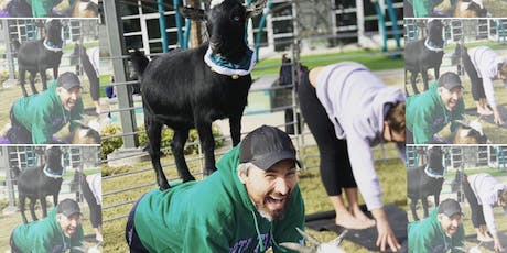 Dad's Day! Goat Yoga Richardson! tickets